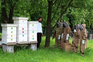 Naši žiacki kozmonauti pri školských včielkach