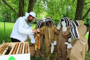 Rukavice dolu a pohladkajme si včielky )